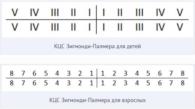 Нумерация зубов по системе Зигмонди-Палмера