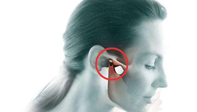 нижнечелюстной сустав – единственная подвижная часть лица