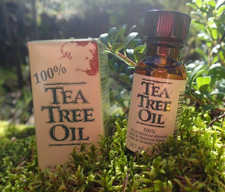 4 секрета успеха масла чайного дерева для отбеливания зубов и укрепления десен